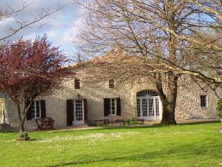Stone Farmhouse near St.Emilion Bordeaux Vineyards - Sainte-Radegonde vacation rentals
