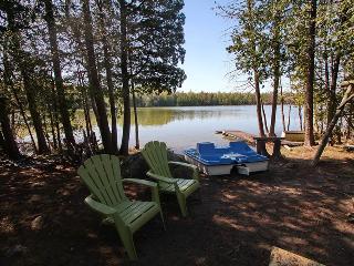Warrener cottage (#756) - Lions Head vacation rentals
