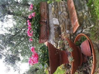 Royal  country inn near florence - Calenzano vacation rentals