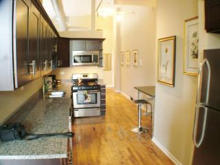 2bd apt in Wicker Park -  Bathhouse - Chicago vacation rentals