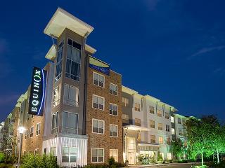 2 bedroom 2 bath Luxury EQ Furnished Apartment - Houston vacation rentals