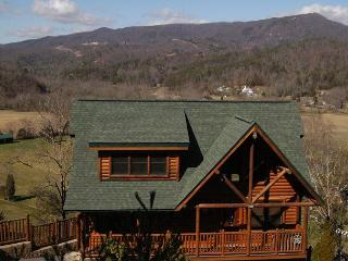 Smoky Mountain Cabin DREAM COME TRUE 555 - Pigeon Forge vacation rentals