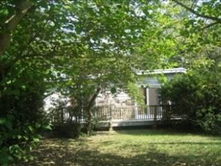 509 Holly Avenue 92946 - Image 1 - Cape May Point - rentals