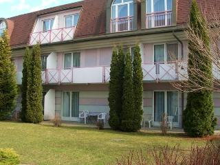 Comfortable apartment close to the Villach SPA - Radenthein vacation rentals