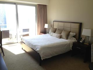 Dubai Marina - Studio at 5 Star Hotel - Water View - Dubai vacation rentals