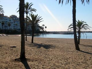 RIGHT IN PUERTO BANUS! EXOTIC LUXE 2bed2bath APT - Puerto José Banús vacation rentals