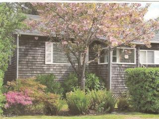 LOCATION! LOCATION!  COZY COTTAGE AT CANNON BEACH - Cannon Beach vacation rentals
