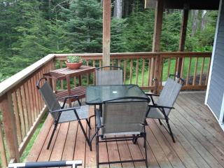 Relaxing overlook of Juneau on Blueberry Hill - Juneau vacation rentals