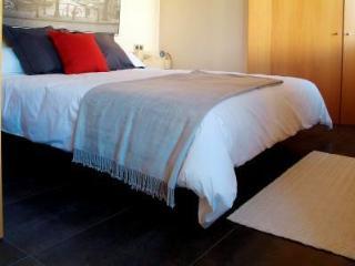 Apartamentos Sandoval - Madrid vacation rentals