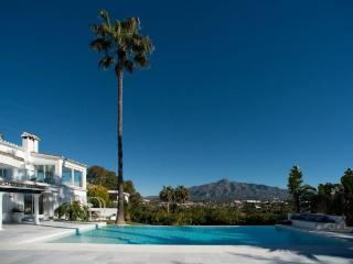 Villa Blanca 52101 - Marbella vacation rentals