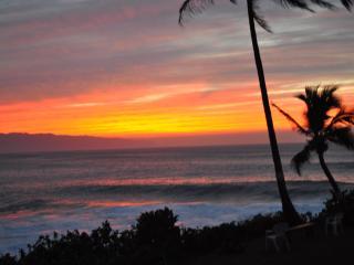 SUZYS TROPICAL RETREAT SPECIAL NO EXTRA PERSON FEE - Hilo vacation rentals
