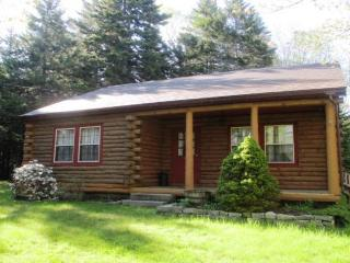 Nice House with DVD Player and Microwave - Tremont vacation rentals