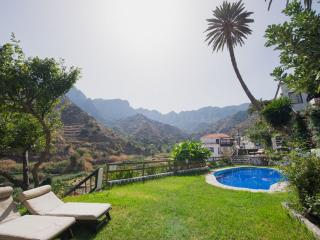 1Bedr Apt with views to Garajonay NP - Gomera vacation rentals