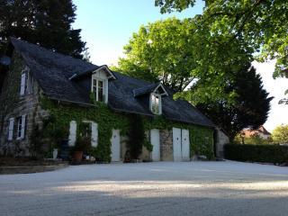 Chateau de Migoule - Brive-la-Gaillarde vacation rentals