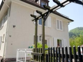 Cozy Apartment close to the city center - Baden-Baden vacation rentals