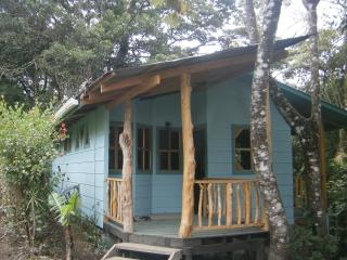 Monteverde Forest Hideaway--Posada del Perezoso - Monteverde Cloud Forest Reserve vacation rentals