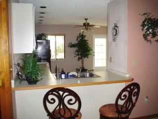 Ormond Oasis - Walk to the Atlantic Ocean - Ormond Beach vacation rentals