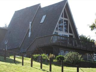 1 bedroom cabin sleeps 2 to 4 with 180 degree views - Whidbey Island vacation rentals
