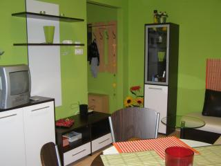 Appartment Bomi - Central Transdanubia vacation rentals