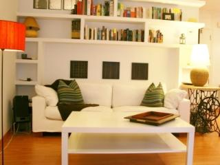 2 Bedroom Apartment - Center Madrid - Madrid vacation rentals