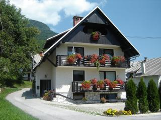 Apartment Bohinj Lake 2-5 Prs. - Srednja vas v Bohinju vacation rentals