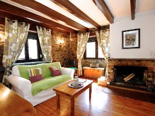 Cosy 1 bedroom apartment with fireplace - Ordino vacation rentals