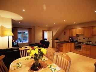 No 2 John Darcy Court - FREE WIFI & FREE access to the Leisure centre with pool - Clifden vacation rentals