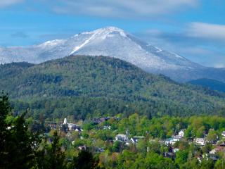 A cozy apartment with a great view - Lake Placid vacation rentals