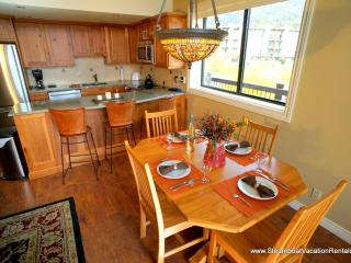 Storm Meadows Club C #419 - Steamboat Springs vacation rentals