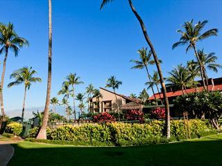Luana Kai D101 Direct Oceanfront Ocean View 1/1 Great Rates! - Kihei vacation rentals