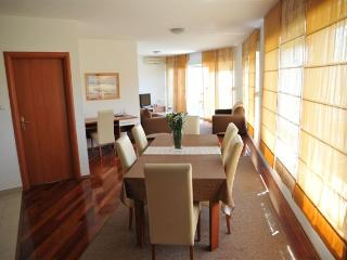 Cozy 3 bedroom Zadar Condo with A/C - Zadar vacation rentals