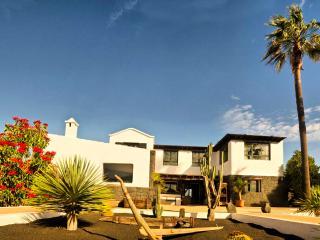 Casa Perdomo, luxury house between vineyards - Masdache vacation rentals