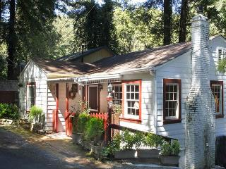 PURE JOY - Guerneville vacation rentals