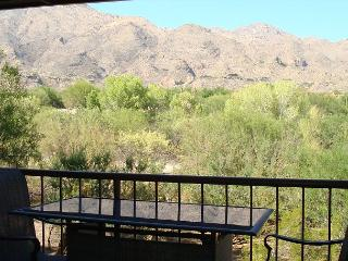 Stunning - INSIDE AND OUT!!!!   Beautiful Inside and Views of the Catalinas! - Tucson vacation rentals