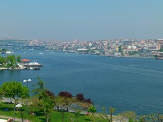 SULTAN SUITS GOLDEN HORN 2, Newly Renovated Exclusive Ottoman Style Apartments with Hamam! - Woodston vacation rentals