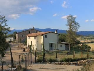 ARANCIONE APARTMENT garden /panoramic gazebo/ pool - Pergine Valdarno vacation rentals