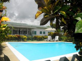Riviera Wellness Retreat, Mammee Bay villa, JM - Mammee Bay vacation rentals