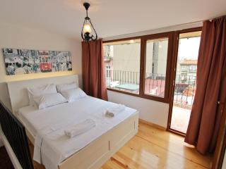 Lovely Dublex Flat with Terrace in Taksim-Beyoglu - Istanbul vacation rentals