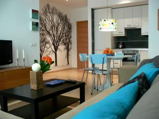 New quality apartment in the centre of Seville - El Rubio vacation rentals