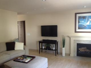 Beach area condo  Newport/Huntington Beach - Costa Mesa vacation rentals