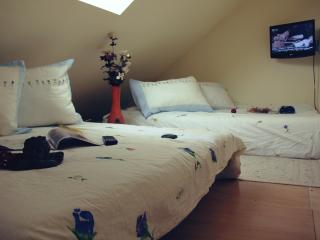 Apartment for 4-6 people in modern style - Kranjska Gora vacation rentals