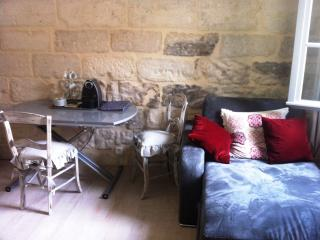 Beautiful Studio in Avignon Center, Pet-Friendly and Air Conditioned - Avignon vacation rentals