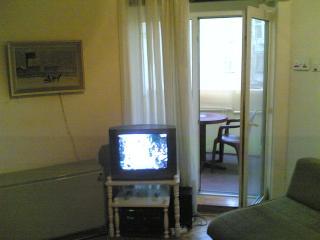 Appartment for rent Serbia Belgrade Dorcol. - Belgrade vacation rentals