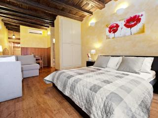 The roman lovely studio - Best deal - Priceless ! - Rome vacation rentals
