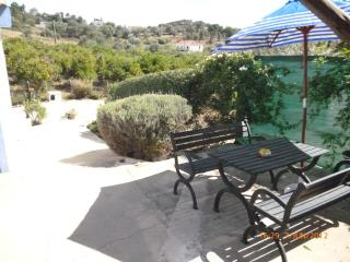 Nice House with Dishwasher and Garden - Lagoa vacation rentals