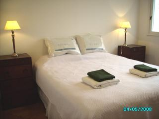 Elegant and Spacious 2 bed flat in Palermo Soho - Buenos Aires vacation rentals
