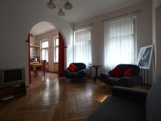 Charming sunny flat with private sauna -city center- - Bohemia vacation rentals