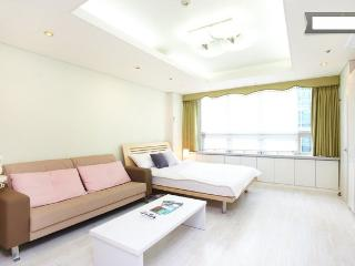 Gangnam Comfortable Studio #5 - Seoul vacation rentals