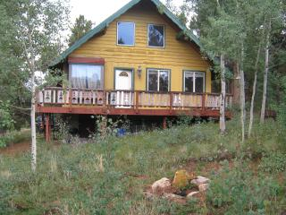 Colorado...Mtn views / backs up to National Forest - Bailey vacation rentals