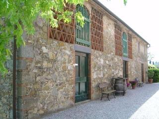 Fattoria di Fubbiano - Mandolata - Italy vacation rentals